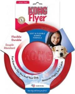 kong flyer frisbee