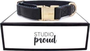 studio proud hondenriem
